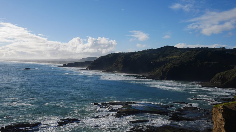 Beautiful bays across the Te Henga walkway